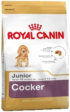 Fotografie Royal Canin pes Cocker Junior 3 kg